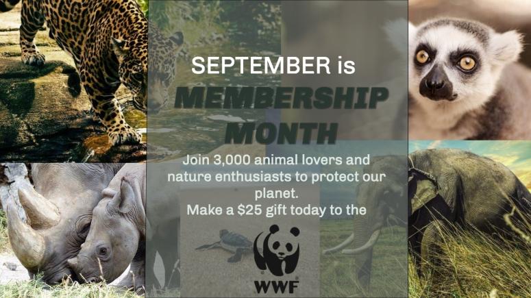 WWF Membership Month